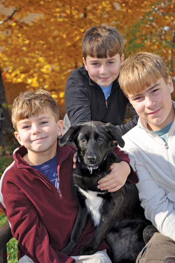 The Henriksen family of York, Maine, suffered a loss Tuesday when a hunter shot their dog Sophie in the leg and she bled to death.