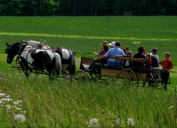 On the last weekend in June, the Greggs host Maple Meadow Farm festival, an old-fashioned country fair on the grounds of their 400-acre farm. Wagon rides, farm equipment demonstrations and baked goods are part of the event.