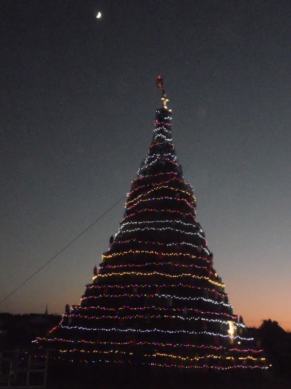 The Moosabec trap tree took roughly a week to build and was officially lit the Saturday after Thanksgiving.