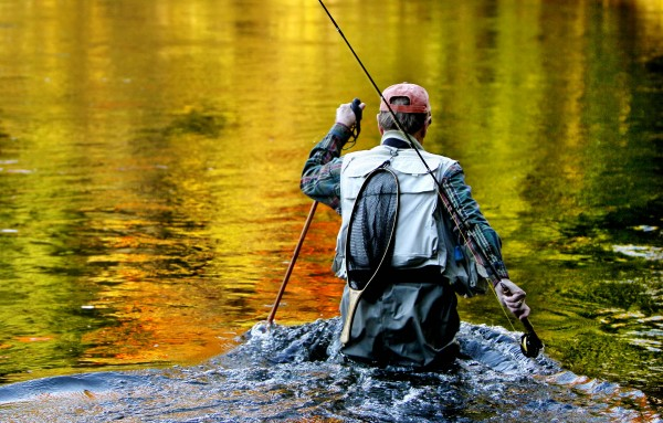 Colorful fall foliage reflects on the water as Art McEvoy of Portland wades back to the shore of Grand Lake Stream on Oct 10. A wider shot showing McEvoy casting in colorful water was selected instead. I liked this photo because it seemed illustrative of the end of fishing season.