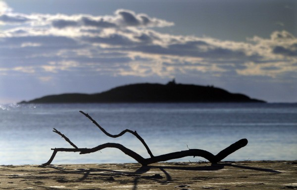 A piece of driftwood lay on the beach at Popham Beach State Park, Sunday, Dec. 11. Sequin Island is seen on the background.