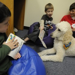 "Silent Sidekicks ""Reading to the Animals"" Program kickoff event held at the Lincoln Memorial Library."