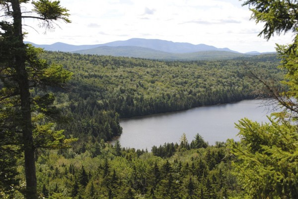 The view from the Turtle Ridge Trail in the Nahmakanta district of the Maine Bureau of Public Lands, one of the trails I hiked this past year.