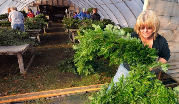 Linda Marple coils up a 32-foot-long garland she just finished while working at the Evenrgreen Valley Farm and Greenhouses in Searsmont Friday.