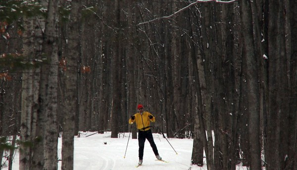 A skate-style cross-country skier skis on the groomed Rolling Hills trail at Cross Country Ski Headquarters in Roscommon, Mich., Feb. 14, 2009.