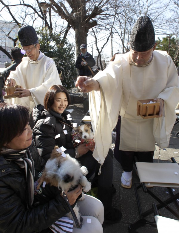 Shinto priests Masaki Kaji (left) and Kenji Kaji perform purification rites for the dogs at Ichigaya Kamegaoka Hachimangu in Tokyo on Monday, Jan. 9, 2012. The shrine specially arranges the dates for pet owners and their pets to offer the New Year's prayers together.