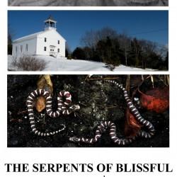 Serpent-handling pastor dies from rattlesnake bite