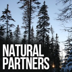 'American Loggers' to feature unlikely guest star: The Nature Conservancy