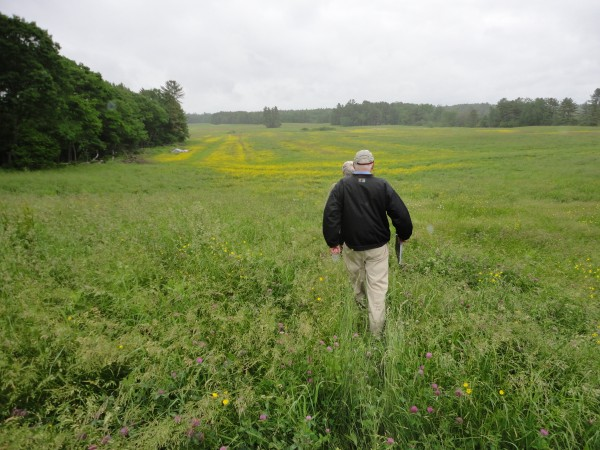 Landowner Tom Chappell and Maine Farmland Trust President Bill Bell walk out over Kennebunk farmland Chappell uses to produce hay. The farmland is among 154 acres Chappell is placing a special easement on to protect it for agricultural uses in the future.