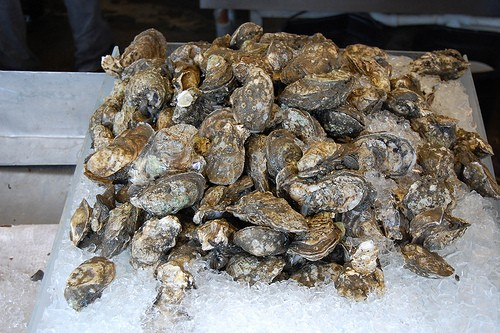 Acadia Sea Farms, owned and operated by Trenton resident Warren Pettegrow, applied in February 2010 to the Maine Department of Marine Resources for approval to grow oysters in two 25-acre lease sites in Western Bay.