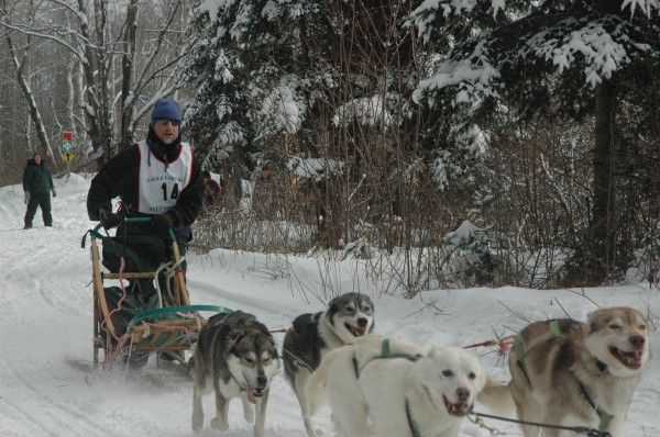 John Kaleta at the 2011 Irving Woodlands/Mad Bomber Sled Dog Races in Eagle Lake.