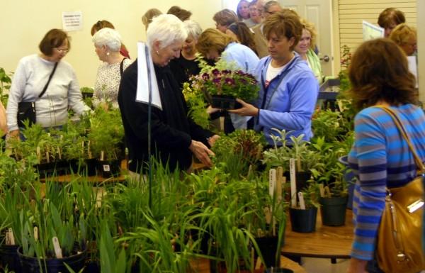 Belfast Garden Club's popular annual plant sale draws quite a crowd!  Photo by Martha Laitin