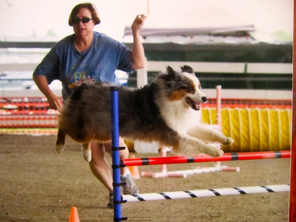 Corinne Chabot and Darby competing in a &quotCanine Performance Event&quot