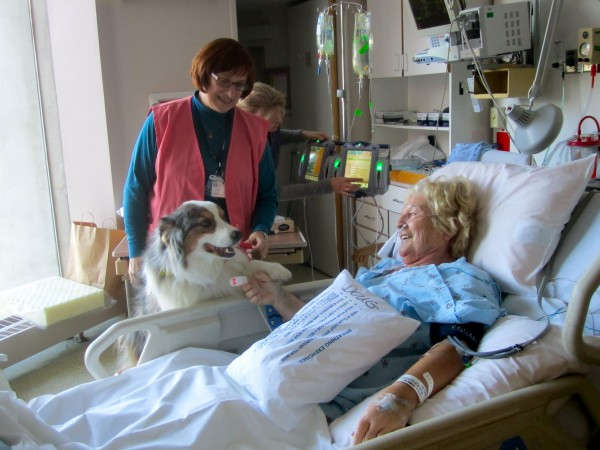Joan Gray shakes hands with Darby, as a nurse takes note of her improving vital signs at Eastern Maine Medical Center.