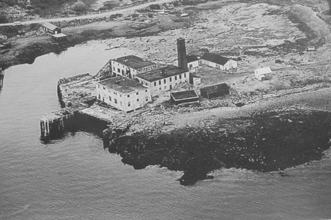 This 1969 aerial photo shows what remained of the long-abandoned Consea factory on County Road in Eastport. The eyesore building has since been razed to clear a site for the new 6,000-square-foot lobster warehouse that is expected to be operational in May.