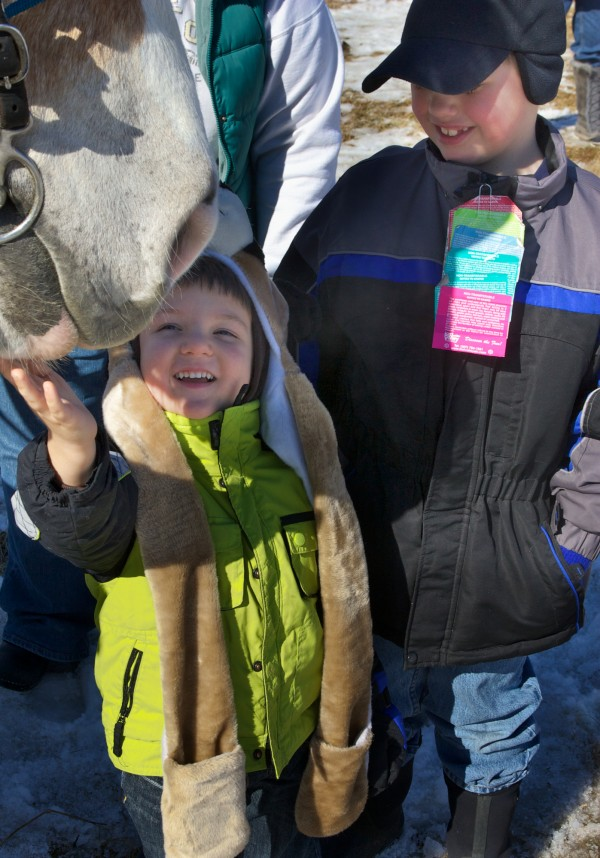Brothers Gavin, 3, and Jordan Izer, 8, of Turner get to know Spike, the draft horse, on Sunday, Feb. 19, 2012 at the 19th annual World's Greatest Sleigh Ride in Lisbon.
