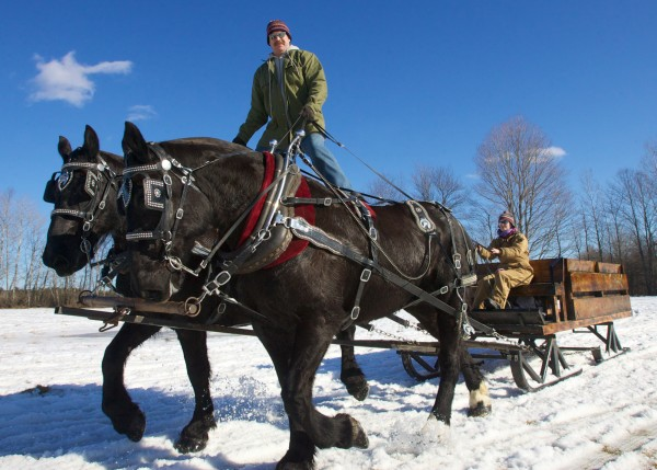 Ernest Garcia of Gar-Lin Farm in Peru rides his draft horses Hughey and Dewey &quotRoman&quot style while Sam Lindley holds onto the reins on Sunday, Feb. 19, 2012 at the 19th annual World's Greatest Sleigh Ride in Lisbon.