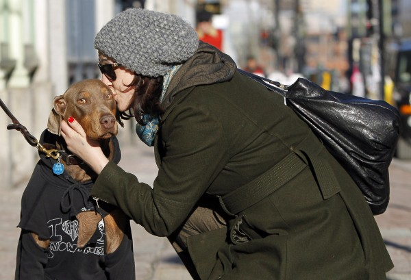 Andie Lynn, a Doberman pinscher, gets a kiss from her owner Naomi Giles during a walk in the Old Port section of Portland on Feb. 4.