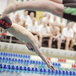 Bangor boys capture PVC swim title