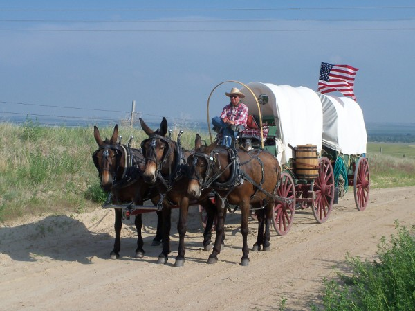 Rinker Buck, on board the mule-drawn wagon he and his brother Nick took down the Oregon Trail.