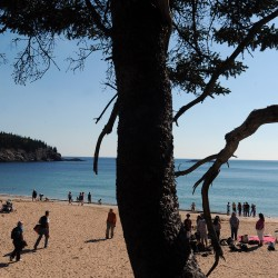 The view from Acadia: Invest in national parks and Maine jobs