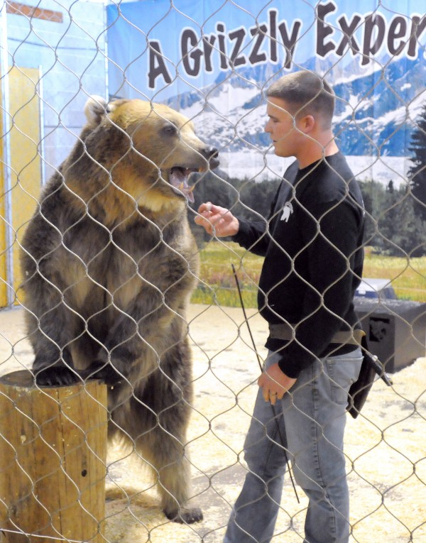 Dexter Osborn gives a treat to Tonk the Alaskan grizzly bear during during the Grizzly Experience show at the Bangor Auditorium and Civic Center during the Camping and RV Show in Bangor Friday.