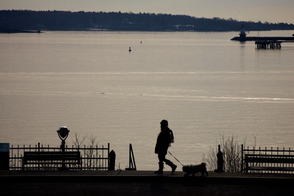 A woman walks her dog on a scenic overlook at Fort Allen Park in Portland on Tuesday morning, Feb. 14, 2012. Friends of the Eastern Promenade has plans to rehabilitate the park, including making the overlook handicap accessible.