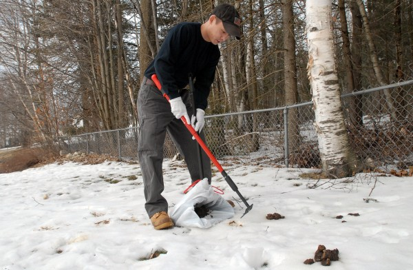 Jason Lubitz cleans up pet waste in a client's yard in Bangor on Wednesday. Lubitz and business partner Justin Gibbons recently started their new business called Scoop Dooty, a pet waste removal business.