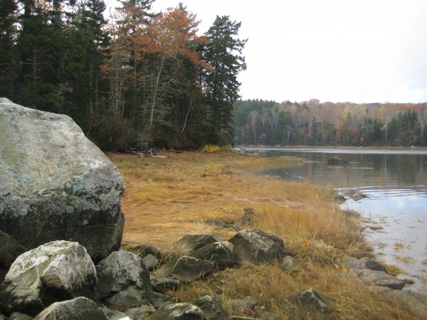 The shoreline of Battle Island, one of 13 land conservation projects within the Bagaduce River watershed eligible for federal matching funds. The island is part of the Maine Island Trail Association's network of coastal islands.