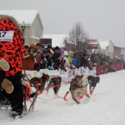 Female musher could be first-ever 250-mile race winner