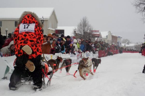 Leigh Hunteman of Cambridge, Md., takes off down Main Street in Fort Kent on Saturday, March 3, 2012. Hunteman wore a colorful outfit and festooned her team with matching booties. There are 63 mushers taking part in the 20th running of the race.