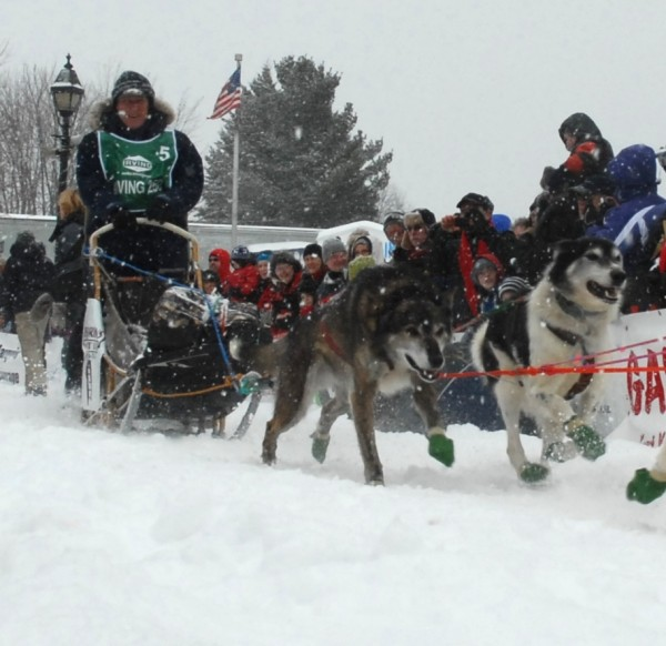 Fort Kent musher Larry Murphy heads out of the start chute Saturday morning for the 20th running of the Can Am Crown International 250-mile sled dog race. The event marked Murphy's 10th run in the Can Am 250 and will be his last, as he is retiring from racing after he crosses the finish line in Fort Kent early this week.