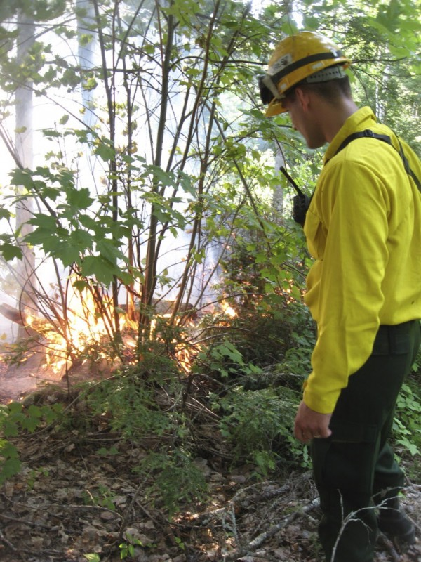 Forest Ranger Josh Noyes sizes up a wildfire near Pocomoonshine Mountain in Princeton in early July 2008.