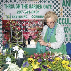 Bangor Garden Show back in bloom
