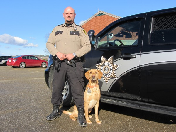 Knox County Sheriff's Deputy John Palmer and his yellow Labrador retriever, Jake, have been working together for more than four years tracking down illegal drugs.
