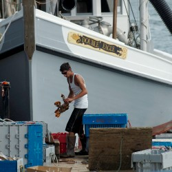 Operations of lobster buyer, processor still suspended