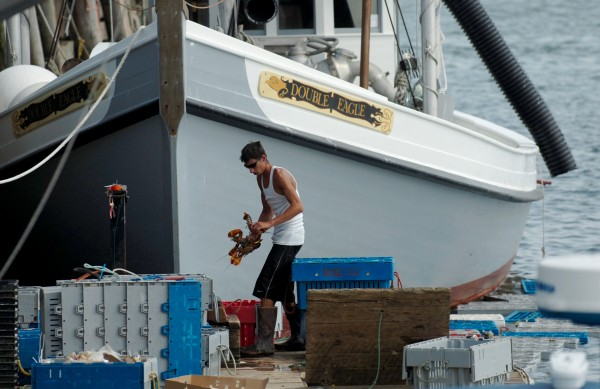 Adrick Roscoe of Live Lobster Co. works on the Rockland Municipal Fish Pier in August 2010 where he buys lobster from fishermen and sells them bait.