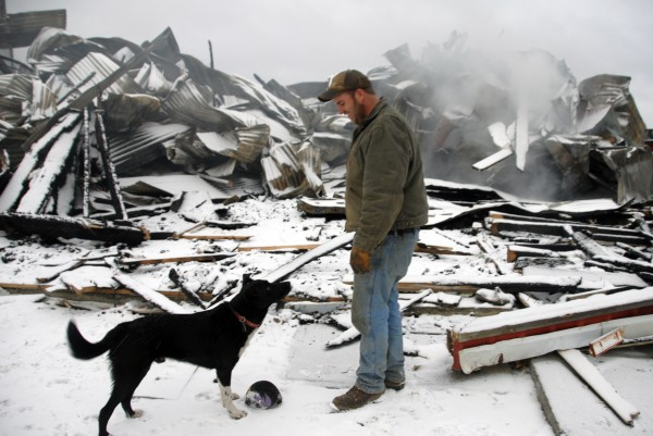 Sherman farmer Sam Sides' dog Scout waits to play catch with the 25-year-old town selectman. The ruins of the barn where 171 one of Sides' pigs were killed three days prior smolders in the background on Wednesday, March 29, 2012.