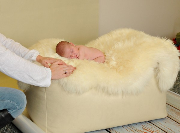 A newborn sleeps while being photographed on the Bella Bun at Amanda Rachael Photography in Pittsfield.