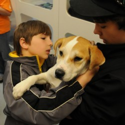 Animal welfare is part of the job for Maine animal control officers
