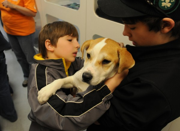Nick Saunders (left) of Bucksport hooks a collar on a puppy that is being adopted by his brother Jordon Cunningham (right) at the Bangor Humane Society in Bangor on Friday, March 30, 2012.