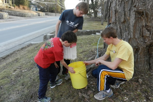 Dan Palmeter (left) and Zac Palmeter (right) hold the bucket for their brother Josh Palmeter as he pours sap they tapped from a tree belonging to their neighbor JC Camelio near their home on Main Street in Orono after school on Monday, March 19, 2012.