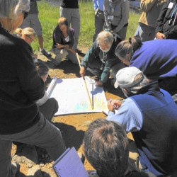 Maine Master Naturalist Program Launches Fourth Year