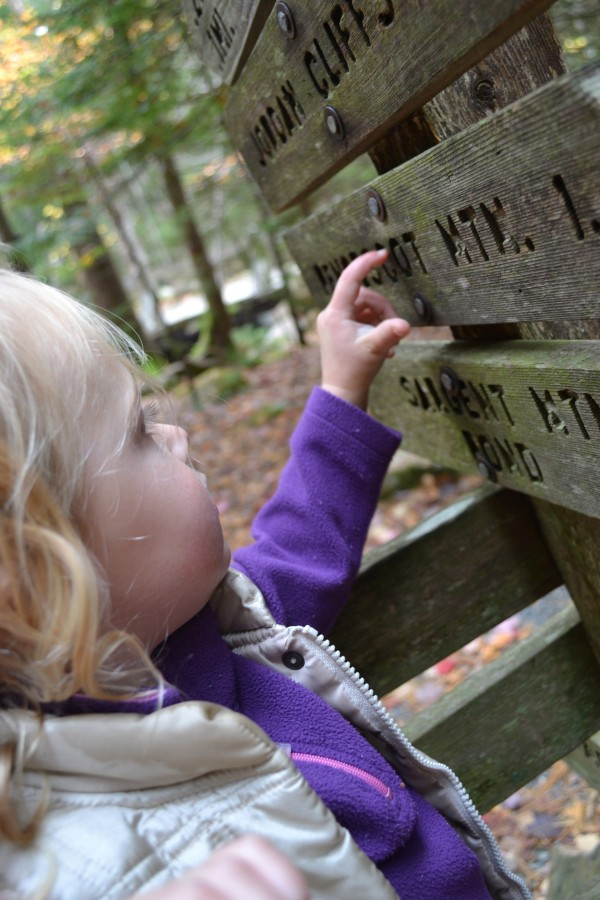 "A ""little critter"" examines a trail signpost at Acadia National Park."