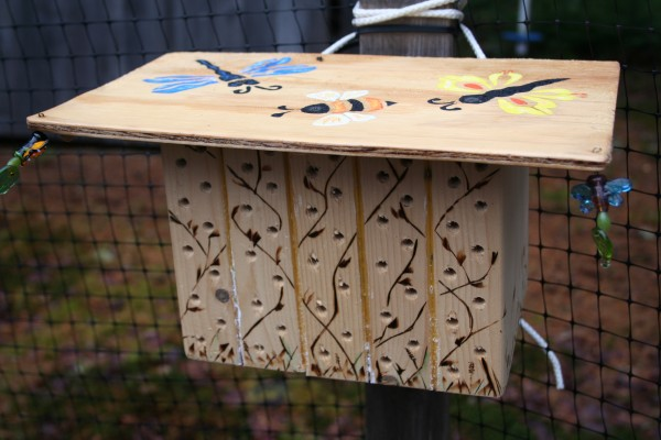 This solitary bee condo was made from five nest boxes constructed as described in this article. Attached to a fence post in Marjorie's Garden, it is decorative as well as functional. Many of its cavities are filled with dormant adult bees, waiting for spring.