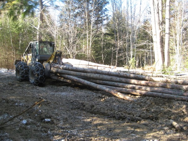 The 124-acre Appleton Preserve in Appleton is the site of the demonstration timber harvest.