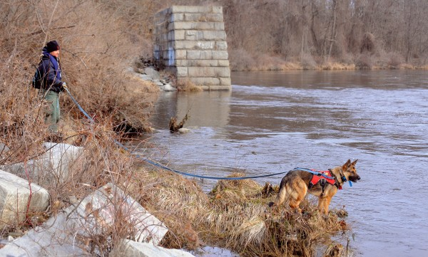 Deborah Palman and her dog Quinn search along the bank of the Kennebec River in Waterville Saturday morning. About 100 people, including Maine Warden Service, State Police and several search and rescue teams from around the state, participated in a search for Ayla Reynolds in the Waterville area.