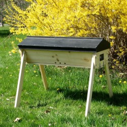 A Gold Star Top Bar Hive