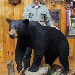 'If it means something, it's worth putting on the wall'A talk with John Dykstra of Northland Taxidermy
