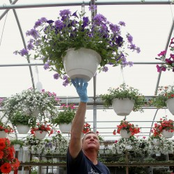 Carmel book and plant sale set for May 12-13